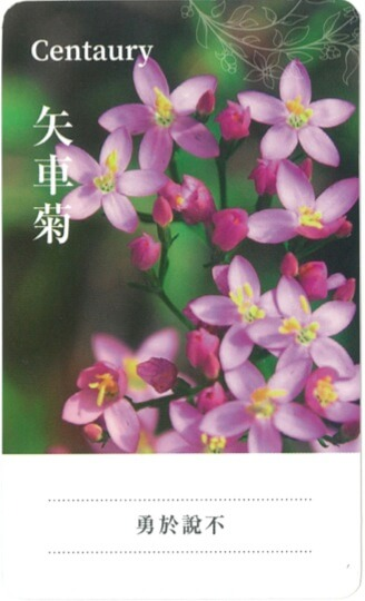 develope-effective-work-relationships-with-flower-remedies-3