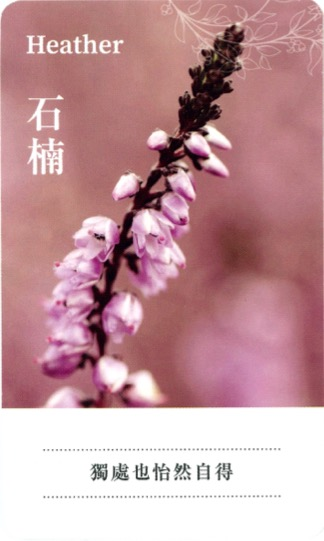 lifestyle-put-the-focus-back-on- yourself-with- flower-remedies-3